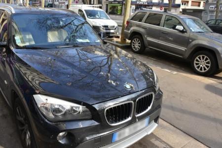 BMW fientes