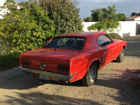 Mustang essence